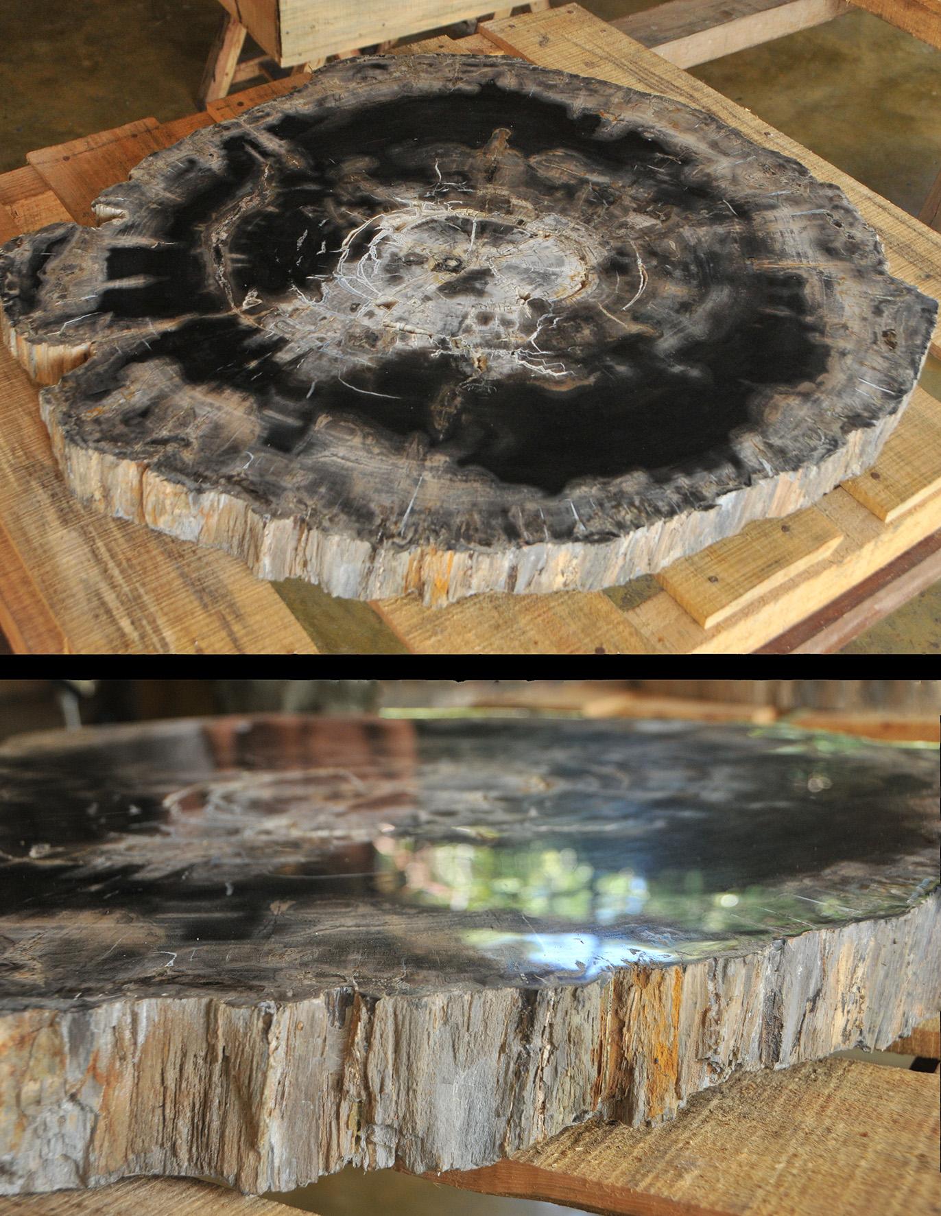 Objets décoratifs en pierres naturelles bois fossile et  ~ Bois De Madagascar